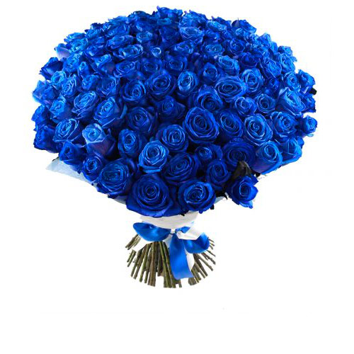 Синие розы цветы купить москва, гвоздики хризантем кустовых